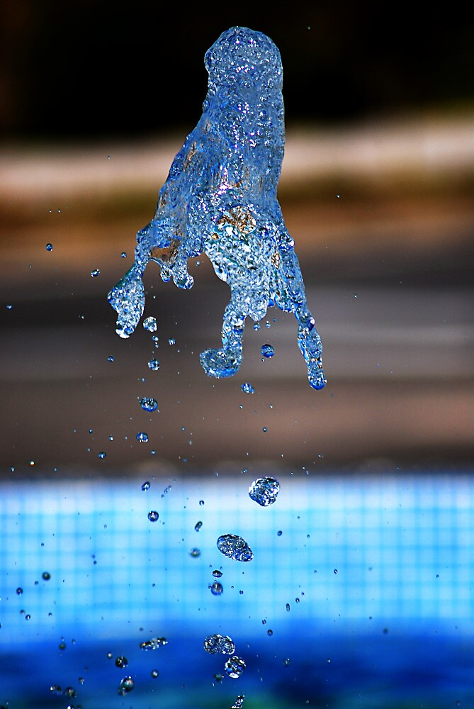 Water shapes by Kate Fortune