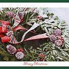 "Christmas Wreath Card by Christine ""Xine"" Segalas"