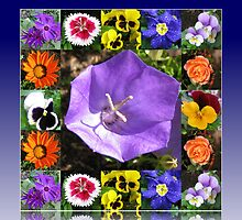 Summers Gone By Floral Collage by BlueMoonRose