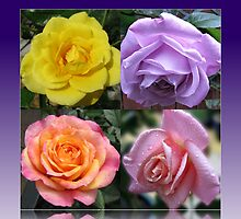 Four Roses Collage by BlueMoonRose