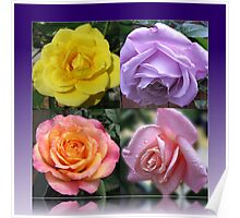 Four Roses Collage Poster