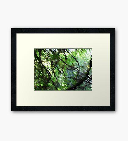 Emerald Garden Framed Print