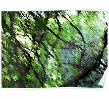 Emerald Garden Poster
