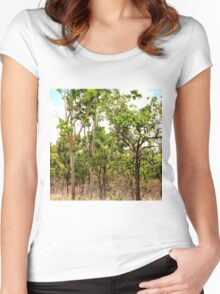 Eucalyptus Trees with Dry Grass Women's Fitted Scoop T-Shirt