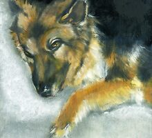 Dixson a Long Haired Shepard by Alma Lee