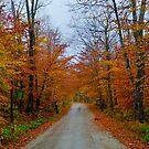 Seyon Lodge State Park by Murph2010