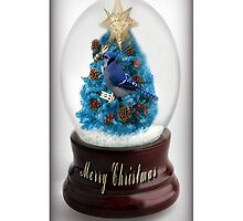 。◕‿◕。 ☀ ツ I'll HAVE A BLUE CHRISTMAS WITHOUT YOU ~BLUE JAY IPHONE CASE 。◕‿◕。 ☀ ツ by ✿✿ Bonita ✿✿ ђєℓℓσ