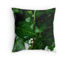 Hanging Ivy Throw Pillow