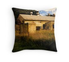 Abandoned factory near Tantanoola, South Australia, in colour Throw Pillow