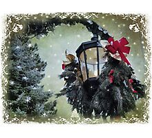 Christmas dreaming Photographic Print