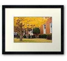 Yellow glory Framed Print