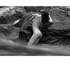 2012 Waterscape Nudes Calendar - May by Scott Foltz