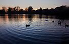 Sunset On Diss Mere by Darren Burroughs