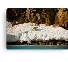 Ice Den Canvas Print