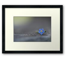 the right time, the  right place Framed Print