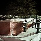 The Night After the Blizzard by MikeZuniga