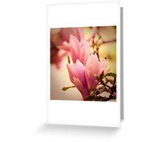 Magnolia 10 Greeting Card