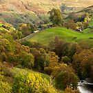 Swaledale in Autumn by fotodayz