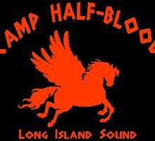 Camp Half Blood by timur139