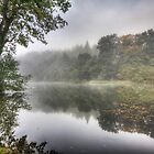 Autumn Mist by David Tinsley
