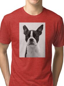 Portrait of Meryl the Boston Terrier Tri-blend T-Shirt