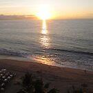 Sunset reflected by palms - puesta del sol con reflecciones en palmas, Puerto Vallarta, Mexico by PtoVallartaMex