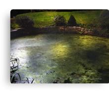 Pondshine Canvas Print