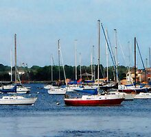 Group of Sailboats Newport RI by Susan Savad