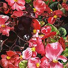 Begonias by marksatchwillart