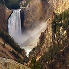 Yellowstone Canyon by bonsta