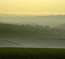 View towards the Channel from the South Downs, WEst Sussex, Uk by Catherine Ames