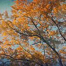 Vintage autumn by AD-DESIGN