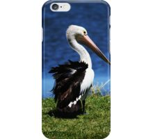 Don't Ruffle My Feathers iPhone iPhone Case/Skin