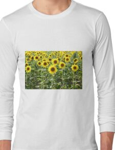 Sunflower field. Photographed in Provence, France  Long Sleeve T-Shirt