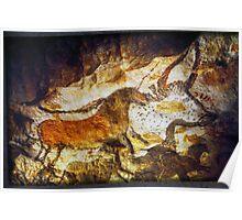 Paleolithic cave painting, Lascaux Cave, France.  Poster