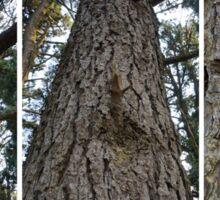 Inspiration Point - Triptych Tree Sticker
