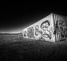 Grafitti in the Wild by Bob Larson