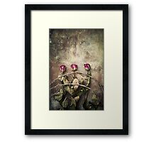 three dried roses and barbed wire Framed Print