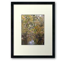 Fall Stream Framed Print