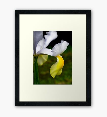 """""""More Than Yellow"""" Framed Print"""