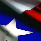 Texas Flag by artstoreroom