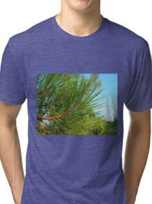 Side view of a young pine tree branch with long needles Tri-blend T-Shirt