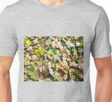 Fallen autumn leaves closeup on the ground Unisex T-Shirt