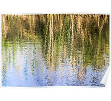 trees on the river bank reflect in the rippling water of the river  Poster