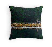 Balsam Lake Shoreline Throw Pillow