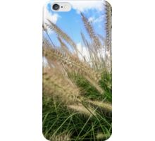 Flowering rush grass on a river bank  iPhone Case/Skin