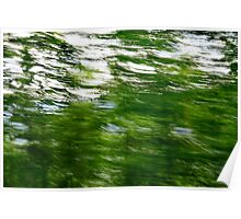 Lush green trees with motion blur  Poster