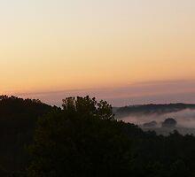 Sunrise and Fog by BarbWireNRoses