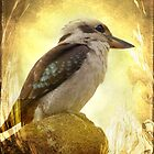 Kookaburra by Linda Lees