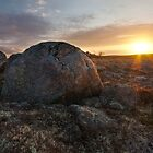 Sunrise on the Barrens by Robert Baker